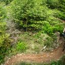 Photo of Robin FRYAR at Dyfi Forest