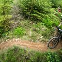 Photo of Declan MARSDEN at Dyfi Forest