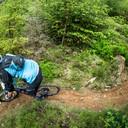 Photo of Matt EDWARDS (mas2) at Dyfi Forest
