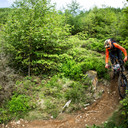 Photo of Gregory TRAVIS at Dyfi Forest