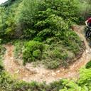 Photo of Dan HINTON at Dyfi Forest