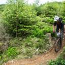 Photo of Ian EVANS (gvet) at Dyfi Forest