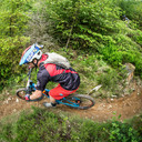 Photo of Dominic COLE at Dyfi Forest
