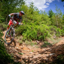 Photo of Andy COATES at Dyfi Forest