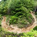 Photo of Ashlee GOUGH at Dyfi Forest