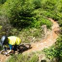 Photo of Rowan HAYWARD at Dyfi Forest