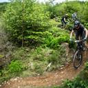 Photo of Ryan JENKINS (sen) at Dyfi Forest