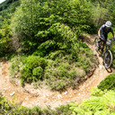 Photo of James ANDERSON (exp) at Dyfi Forest
