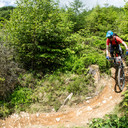 Photo of Christopher BROOM at Dyfi Forest