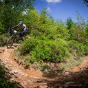 Photo of Chris COOKE at Dyfi Forest