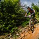 Photo of Ben DAVIES (sen) at Dyfi Forest