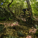 Photo of Willem COOPER at Thunder Mountain, MA