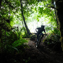Photo of an untagged rider at Capitol Forest, WA