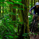 Photo of Riley DOWD at Capitol Forest, WA