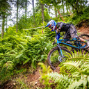 Photo of Ramsay DALGLIESH at Ae Forest
