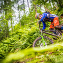 Photo of Steven DEAS at Ae Forest
