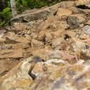 Photo of ? at Silver Mtn, Kellogg, ID