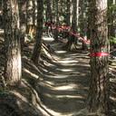 Photo of Coen SKRYPNEK at Whistler, BC