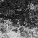 Photo of Simon HUBBARD at Mount Edgcumbe