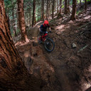 Photo of Riley DOWD at Snoqualmie Pass, WA