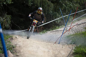 Photo of David SIESS at Innsbruck