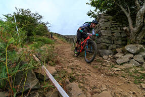 Photo of James GRIFFITHS (vet) at Swaledale