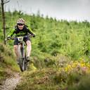 Photo of Damien MCGUINN at Ballyhoura Woods, Co. Limerick