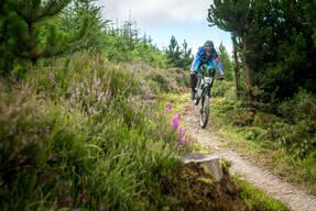 Photo of Brendan O'HANLON at Ballyhoura Woods, Co. Limerick