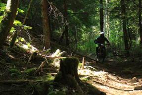 Photo of Dru MCMACKIN at Snoqualmie Pass, WA