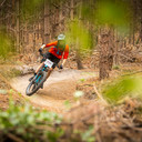 Photo of Will PARRIS at Swinley Forest