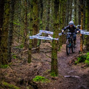 Photo of Frankie LOCHRIE at Kirroughtree Forest
