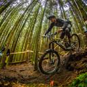 Photo of Daniel MERRILEES at Kirroughtree Forest