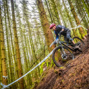 Photo of Alistair DALGLIESH at Kirroughtree Forest