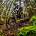 Photo of Fabian WELFORD-TUITT at Kirroughtree Forest