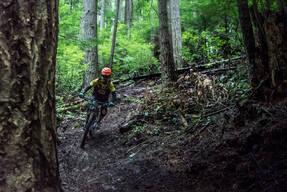 Photo of Craig MARTIN at Tiger Mountain, WA