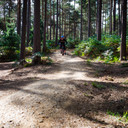 Photo of ? at Swinley Forest