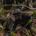 Photo of Adriano DIGIACINTO at Mt Washington, BC