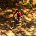 Photo of Diane HAWKINS at Dyfi Forest