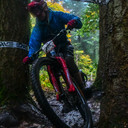 Photo of Joe FINNEY at Forest of Dean