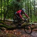 Photo of Dai ROWLEY at Forest of Dean