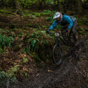 Photo of Carl SEARLES at Forest of Dean