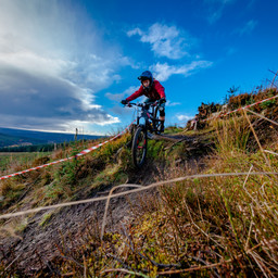 Photo of Sian DILLON at Kielder Forest