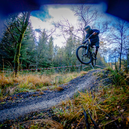 Photo of ? at Kielder Forest