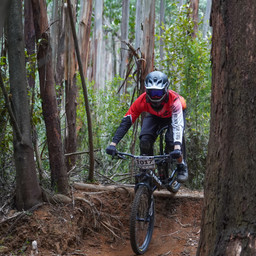Photo of Brad AHLBERG at Narbethong, VIC