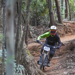 Photo of ? at Narbethong, VIC