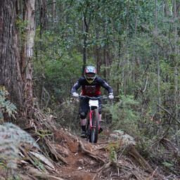 Photo of Dave HABICHT at Narbethong, VIC