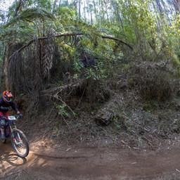 Photo of Ness HINNEBERG at Narbethong, VIC