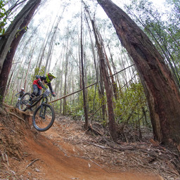 Photo of Darcy RICHARDS at Narbethong, VIC