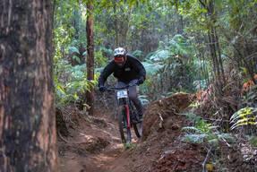Photo of Tryfan HUNTER at Narbethong, VIC