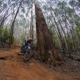 Photo of Ben ZWAR at Narbethong, VIC